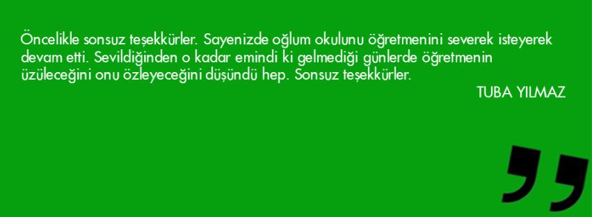 Slayt31