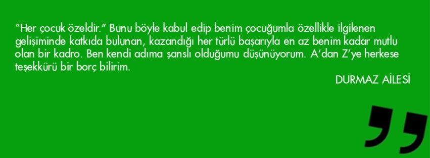 Slayt33