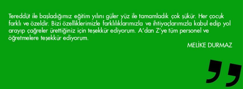 Slayt35