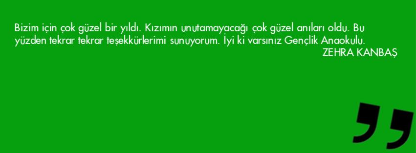 Slayt39