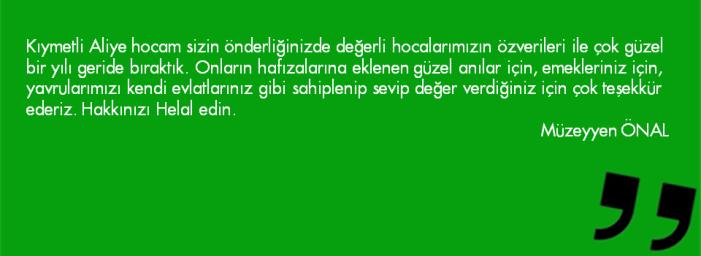 Slayt5