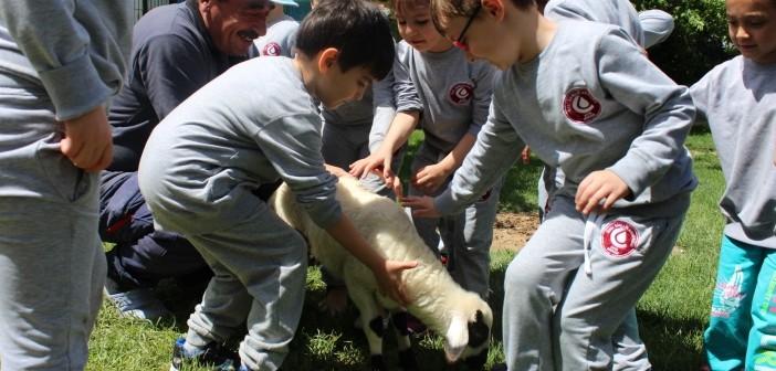 Gençlik Anaokulu Doğa İle İç içe