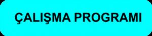 calismaprogrami